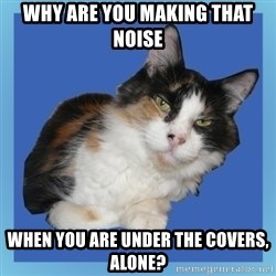 Sees It All Cat - Why are you making that noise when you are under the covers, alone?