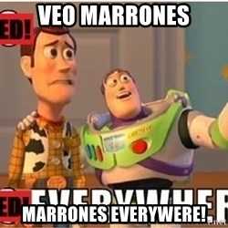 Toy Story Everywhere - VEO MARRONES MARRONES EVERYWERE!