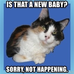 Sees It All Cat - Is that a new baby? Sorry, not happening.
