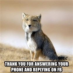 Disappointed Tibetan Fox - THANK YOU FOR ANSWERING YOUR PHONE AND REPLYING ON FB