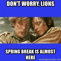 Lord of the Rings - don't worry, Lions spring break is almost here