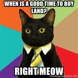 Business Cat - when is a good time to buy land? right meow