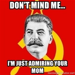 Stalin Says - don't mind me... i'm just admiring your mom