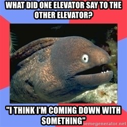 "Bad Joke Eels - what did one elevator say to the other elevator? ""i think i'm coming down with something"""