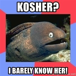 Bad Joke Eels - KOSHER? I BARELY KNOW HER!