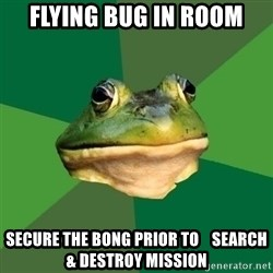 Foul Bachelor Frog - Flying bug in room secure the bong prior to    search & destroy mission