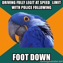 Paranoid Parrot - driving fully legit at speed   limit with police following foot down