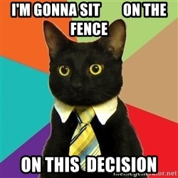Business Cat - i'm gonna sit        on the fence on this  decision