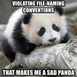 sad panda - violating file-naming conventions that makes me a sad panda