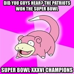 Slowpoke - did you guys hear? the patriots won the super bowl super bowl xxxvi champions