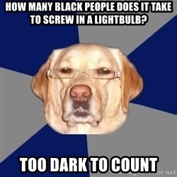 Racist Dog - how many black people does it take to screw in a lightbulb? too dark to count