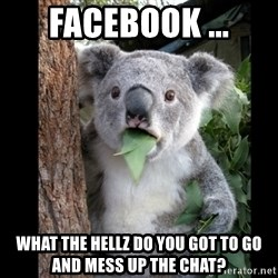 Koala can't believe it - Facebook ... What the hellz do you got to go and mess up the chat?