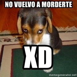 Sad Puppy - no vuelvo a morderte  XD