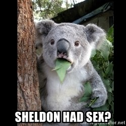 Koala can't believe it - sheldon had sex?