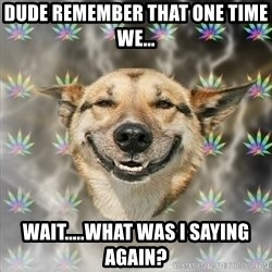 Stoner Dog - dude remember that one time we... wait.....what was i saying again?