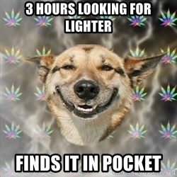Stoner Dog - 3 hours looking for lighter  finds it in pocket