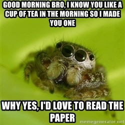 Spiderbro - Good morning bRo, I knoW you Like a cup of tea in the morning so I made you one Why yes, i'd love to read the paper