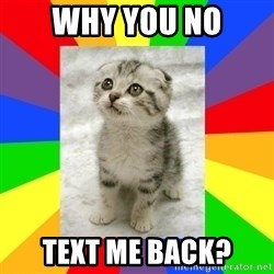 Cute Kitten - Why you no text me back?