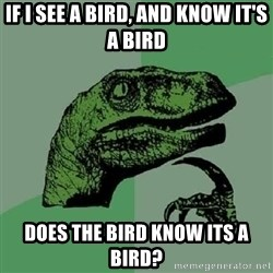 Philosoraptor - If I see a bird, and know it's a bird Does the bird Know its a bird?