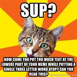 Bad Advice Cat - sup? how come you put too much text at the lowere part of your meme while putting a single three letter word atop? can you read this?
