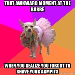 Ballet Chihuahua - That awkward moment at the barre when you realize you forgot to shave your armpits