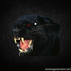 Roleplay Panther -                                                       .