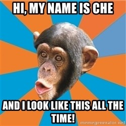 Stupid Monkey - HI, MY NAME IS CHE AND I LOOK LIKE THIS ALL THE TIME!