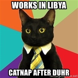 Business Cat - Works in Libya Catnap after Duhr