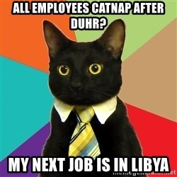Business Cat - all employees catnap after duhr? my next job is in Libya
