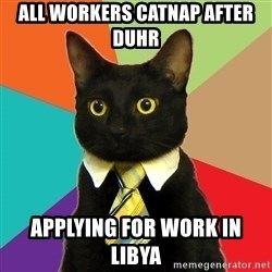 Business Cat - all workers catnap after duhr applying for work in Libya
