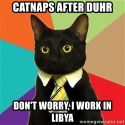 Business Cat - catnaps after duhr don't worry, i work in libya