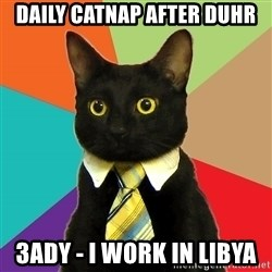 Business Cat - daily catnap after duhr 3ady - i work in libya