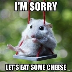 Sorry I'm not Sorry - I'm sorry Let's eat some cheese