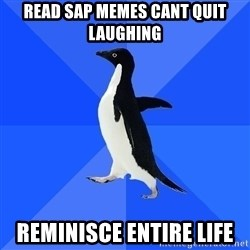 Socially Awkward Penguin - read sap memes cant quit laughing reminisce entire life