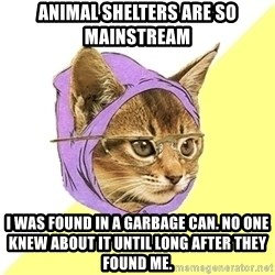 Hipster Kitty - animal shelters are so mainstream i was found in a garbage can. No one knew about it until long after they found me.