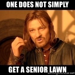 Lord Of The Rings Boromir One Does Not Simply Mordor - one does not simply  get a senior lawn