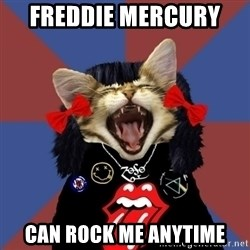 Rock fangirl kitty - Freddie Mercury  Can Rock Me Anytime