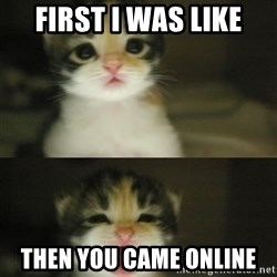 Adorable Kitten - First I was like then you came online