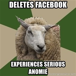 Sociology Student Sheep - Deletes Facebook Experiences serious anomie