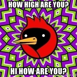 Omsk Crow - How high are you? Hi how are you?