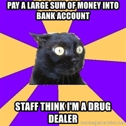 Anxiety Cat - pay a large sum of money into bank account staff think i'm a drug dealer