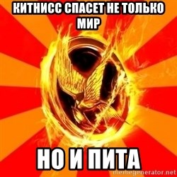 Typical fan of the hunger games - Китнисс спасет не только мир но и пита
