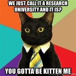 Business Cat - we just call it a research university and it is? You gotta be kitten me