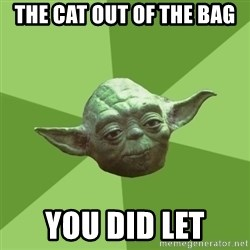 Advice Yoda Gives - The cat out of the bag you did let