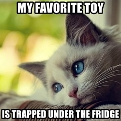First World Problems Cat - my favorite toy is trapped under the fridge