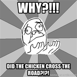 Whyyy??? - WHY?!!! Did the chicken cross the road?!?!