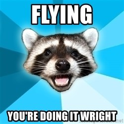 Lame Pun Coon - Flying you're doing it wright