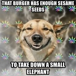 Stoner Dog - that burger has enough sesame seeds to take down a small elephant