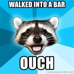 Lame Pun Coon - Walked into a bar ouch