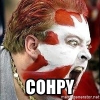 Hockey Fan - COHPY